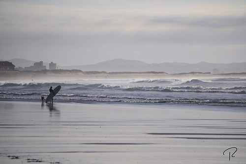 Observando, Playa de Somo