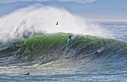 Nice wave, Steamer Lane-Middle Peak photo