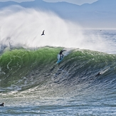 Nice wave, Steamer Lane-Middle Peak