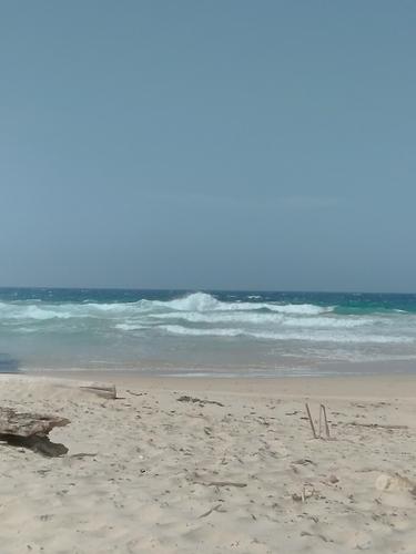 Boca or sharkbay, Wariruri
