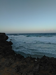 Boca or Shark bay photo