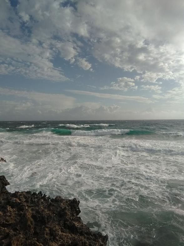 Shark Bay break guide