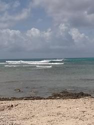 Rancho, Arashi Bay Reef photo