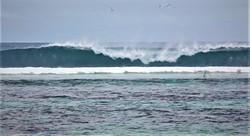 Anse Bougainville photo