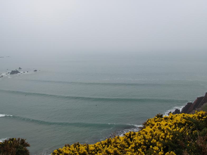 West Dale surf break