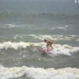 Surfside Jetties, Surfside Jetty