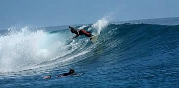 Restaurants surf break