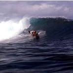 Goofy wave, Namotu Lefts