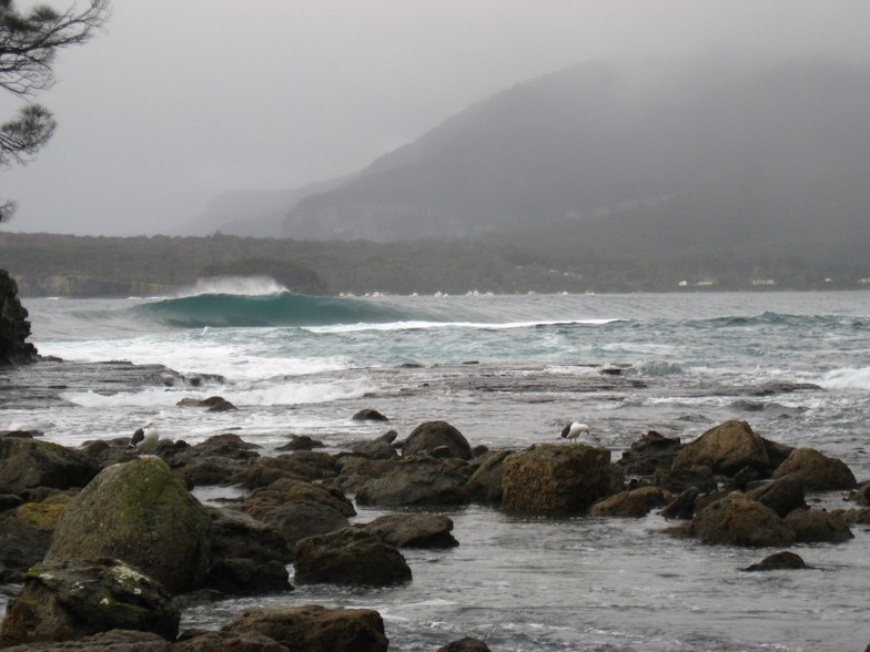 Eaglehawk Neck Reef break guide