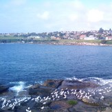 View from boat ramp, Malabar