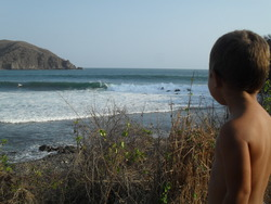 barra surf shop, Barre de Navidad photo