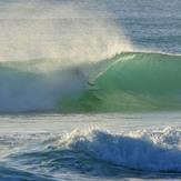 SURFER MAX TEAM MRS FROG, Tabatinga