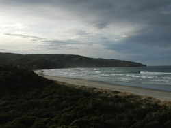 Looking to the SE, Otago Peninsula - Allans Beach photo