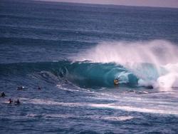 Shark Island (Cronulla) photo