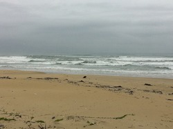 As of Sept. 22 at 9:30 AM Vietnam time, China Beach photo