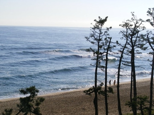 Early morning surf check, Gyongpo Beach