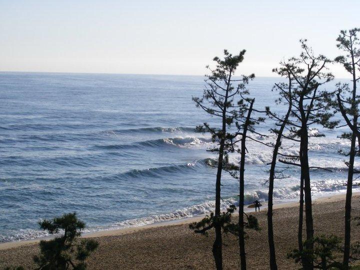 Gyongpo Beach break guide