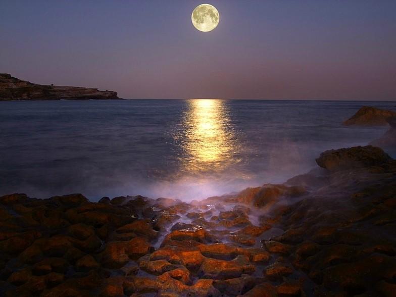 Moonrise Magic, Malabar