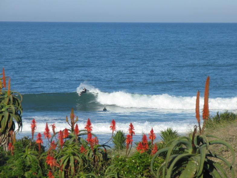 Boneyards surf break