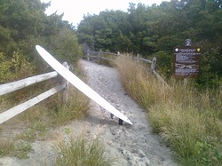 A2 Walkway to the Beach, Island Beach State Park photo