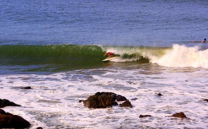 La Posada, Sharkbay