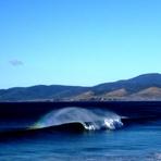 East Coast Glory, Shelly Point
