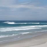 Middles, Dunedin - Middle Beach (Moana Rua)