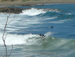 Nice left, Houghton Bay photo