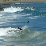 Nice left, Houghton Bay