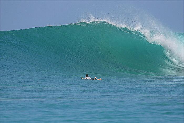 Hammerhead surf break