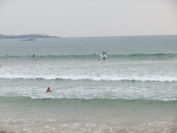 The perfect place for beginners to learn to surf because there is only sand and no coral in this bay, Weligama photo