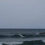 Easter surf, Lu Bagnu
