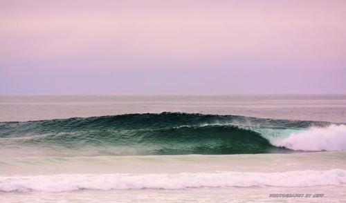 SUNDAY, Dunes Cove