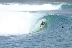 DANIEL MAWKES TUBED AT MACCAS, Macaronis photo