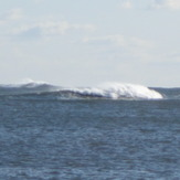 Feb 2012, Beadnell Bay