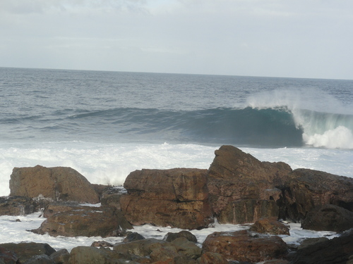 Clean wave at Shipstern Bluff