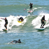 Party Wave, Fort Point