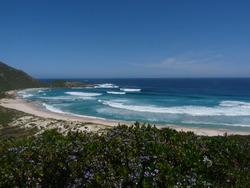 Conspicuous Beach photo
