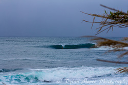 Morning Drop, Shark Island (Cronulla) photo