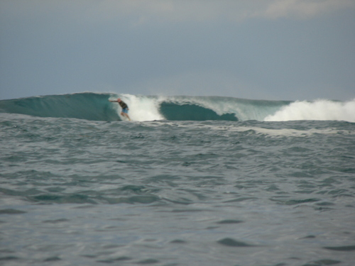 south swell, Darigayos