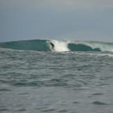 south swell, Darigayos