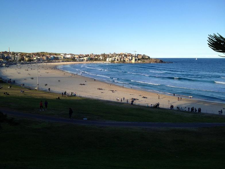 Bondi Beach surf break
