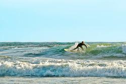 Singlefin, Vila Praia de Ancora photo