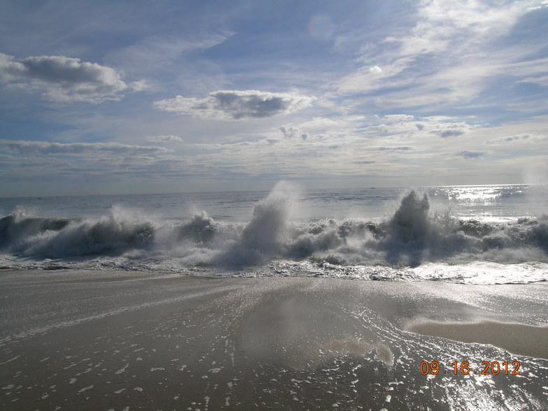The Majestic Shoreline, Bay Head