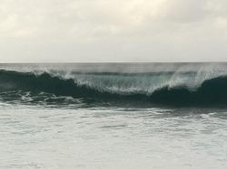 Kaena Point photo