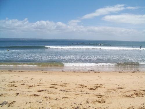 cat bay summer, Cat Bay (Shelly Beach)