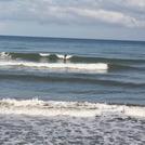 cherchell surf, Cherchell Tizirine