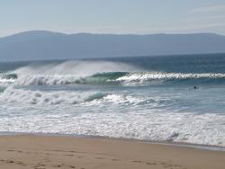 Lefty, Hope Beach photo