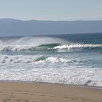 Lefty, Hope Beach