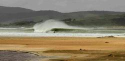 Bugga, Porpoise Bay photo